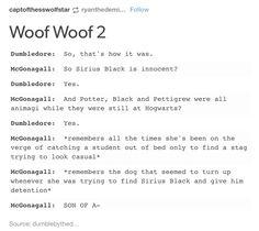 The Marauders, McGonagall and Dumbledore