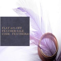 Schuman Feathers - Quality Wholesale Feathers to buy in the USA Pheasant Feathers, Ostrich Feathers, Peacock Feathers, Colorful Feathers, Carnival Costumes, Creative People, Coupon Codes, Diy Projects, Coding