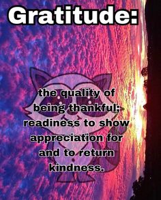 #freetoedit #gratitude #thankful #dictionary gratitude means the quality of being thankful; readiness to show appreciation for and to return kindness.