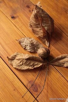 walnut Moth, Brown, Kitchen, Color, Cooking, Kitchens, Colour, Brown Colors, Cuisine