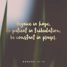 """Rejoice in hope, endure in suffering, persist in prayer."" Romans 12:12 NET http://bible.com/107/rom.12.12.net"