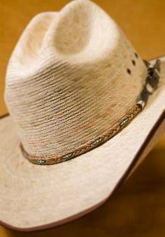 Horse hair, Cowboys and Horses on Pinterest