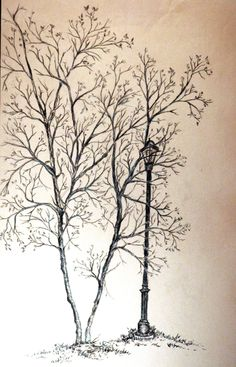 Drawn with Charcoal while looking at trees and lamp post