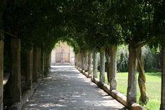Corigliano d'Otranto, Italy: Masseria Appidè - esterni