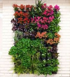 DIY How to Make Vertical Garden