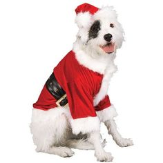 Rubies Costume Christmas Collection Pet Costume, Medium to Large, Santa Claus Hat and Beard Merry Christmas, Christmas Dog, Christmas Fashion, Christmas Suit, Christmas Holidays, Costume Christmas, Holiday Costumes, Halloween, Costume Chien