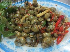 Món ốc xào sả ớt là món ăn quen thuộc của người dân Việt Nam, món ốc này làm hết sức đơn giản lại không tốn nhiều thời gian để chế biến