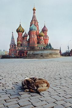 Steve McCurry :: Moscow, Russia