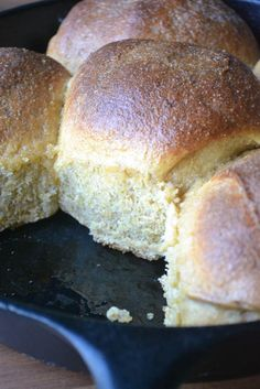 Crusty Anadama Rolls | Cornmeal and molasses give it golden color, a chewy texture, and an ever so slight sweetness