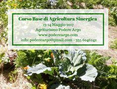 Costruisci il tuo orto...sinergico. Corso base di agricoltura sinergica al Podere Argo via Podere Argo. Click on the image to see more!