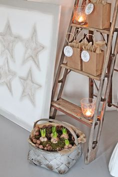 VIBEKE DESIGN: Juleutstilling 2013.  Gillar hyacinter i korgen .... Så fint!
