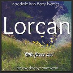 Lorcan would would make a great choice for a parent looking for an Irish name that's cool but somewhat under the radar (in the U.S. at least, Lorcan is growing in popularity in the Ireland). I love its strong meaning! Lorcan is a notable name in Irish history and it has some literary merit to it too. Lorcan is a name chosen by J.K. Rowling  for the son of one of her memorable characters, Luna Lovegood.