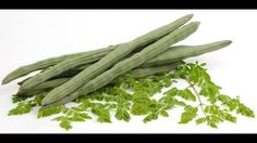 Moringa is a miracle tree that cures 300 diseases including diabetes and cancer. Moringa or drumstick tree is also known as the miracle tree because of its rich nutrient density.  It is rich in proteins fats vitamin C potassium carotenoids and many other nutrients which improve the health.   All of moringa tree parts are used in nutritional supplements and added to the cosmetic products.  Here are 7 Moringas health benefits:  1. Moringa is rich in antioxidants that remove excess waste…