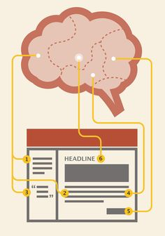 This is Your Brain on Content Marketing
