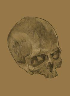 Skull sketch Skull Sketch, Skull Art, Pencil Drawings, Paintings, Art Prints, Portrait, Color, Art Impressions, Paint
