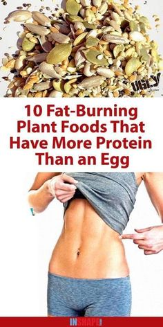 We are constantly being advised to make sure we are getting enough protein, as this fabulous macronutrients numerous health benefits. However, most of you immediately think about animal products when you hear about proteins, but we are here to inform you that there are numerous vegetarian protein sources. Eggs are extremely high in protein, but...