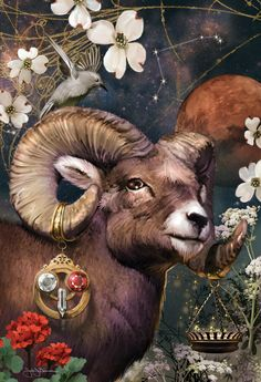 Aries the Ram What makes YOU tick? Sign up for a chance to win a FREE #astrology reading. www.insideconnection.tv Winners chosen monthly.