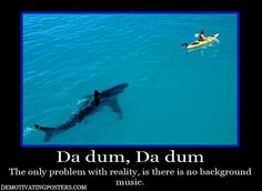 shark demotivational posters - Dump A Day You Funny, Really Funny, Funny Cute, Hilarious, Funny Stuff, Funny Images, Funny Photos, Dump A Day, Demotivational Posters