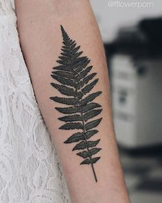 Fern#tattoo #tattoos #ink #inked #tattooed #tattooist #design #tattooedgirl #art…