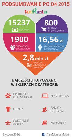 Podsumowanie po czwartym kwartale działalności FaniMani.pl Q4 2015