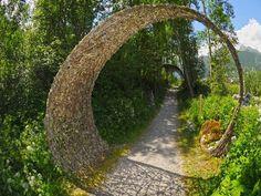 La structure végétale en saule tressé est en effet un art à part entière. Elle peut se décliner de différentes manières et permet à chacun de créer la stru
