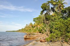 This is the way the carribean beach looks at Cahuita Costa Rica   long carribean beach trip in london air travel plan hiking in mountain travel spots to visit
