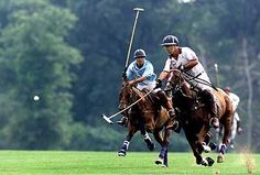 Polo matches are played at Bethpage State Park....
