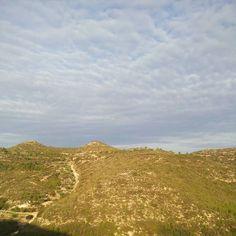 En 30 minuts comença la 9a Cursa de la Serra de les Fites. Ebreactiu ja està esperant als corredors. @serradelesfites #ebreactiu #vidaactiva #terresdelebre @circuitebre #cursespermuntanya #trailrunning
