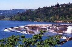 My first home in Oregon was in a tiny town called Oregon City, Oregon & Willamette Falls in the middle of the Willamette River Northwest States, Pacific Northwest, Oregon City High School, Places To See, Places Ive Been, West Linn, Oregon Living, State Of Oregon, Willamette Valley