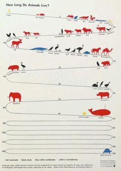 http://www.vxcrew.ch/2012/02/07/vintage-visual-language-the-story-of-isotype-brain-pickings