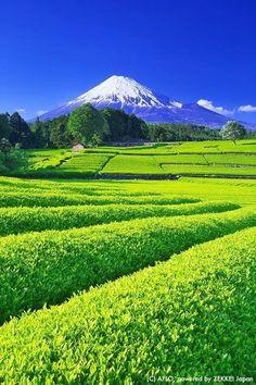 Scenic Photography, Landscape Photography, Nature Photography, Beautiful Nature Wallpaper, Beautiful Landscapes, Nature Pictures, Beautiful Pictures, Monte Fuji, Japanese Nature