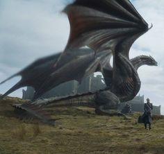 The amazing Drogon!