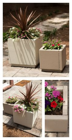 DIY concrete planters using pavers. Simple and inexpensive way to add color to your patio!