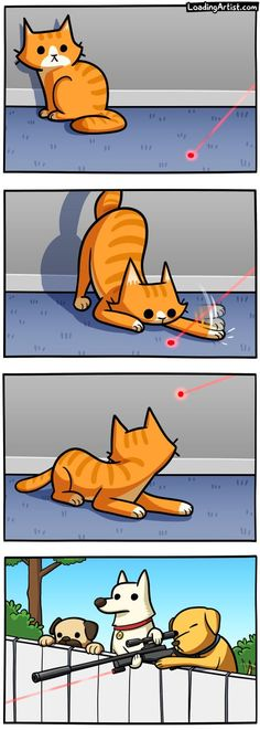Cats and Dots