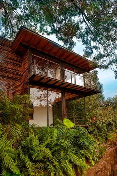 House-and-Lush-Vegetation