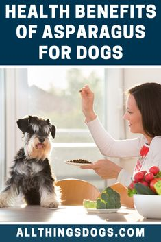 If we were looking at the human equivalent, 1 cup of asparagus would provide of the recommended daily intake of Vitamin K, Vitamin K plays a key role in blood clotting and protein synthesis. Read on to find out other health benefits of Asparagus for dogs. Health Benefits Of Asparagus, Broccoli Benefits, Brocolli, Dog Nutrition, Nutritional Requirements, Dog Diet, Terrier Breeds, Can Dogs Eat, Broccoli Recipes