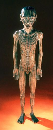 Acupuncture is a way of providing relief from a variety of ailments and for improving health. Find out how you can slow down the aging process with acupuncture. Gross Anatomy, Vintage Medical, Ancient Artifacts, Science And Nature, Macabre, Chinese Art, Natural History, Vintage Photos, Sculpture