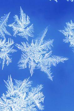 X Snowflake Photo Iphone Wallpaper : 640x960px HD Wallpapers #5515 ~ Ngewall.com | iPhone壁紙ギャラリー
