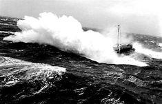 1949 THORØRN Merchant Navy, Old Port, Stavanger, Corvette, Niagara Falls, Sailing Ships, Thor, Whale, Diesel