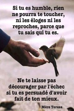 Que léchec ne vous décourage pas. Magic Quotes, Best Quotes, Daily Positive Affirmations, Happy Minds, Quote Citation, Lessons Learned In Life, French Quotes, Positive Inspiration, My Mood