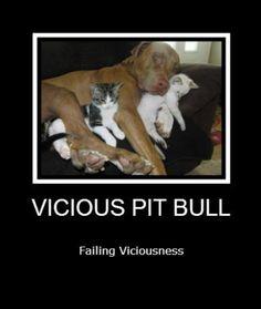 So Vicious :)