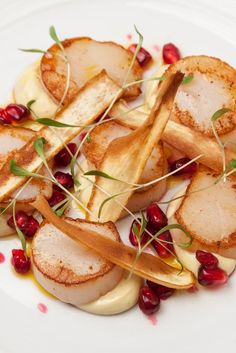 Sweet scallops are paired with a lightly curried parsnip purée and sweet pomegranate in this marvellous recipe from Marcus Wareing Parsnip Puree, Marcus Wareing Recipes, Starter Dishes, Starter Recipes, Great British Menu, Christmas Starters, Parsnip Recipes, Scallop Recipes, Seafood