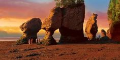 Explore New Brunswick's Bay of Fundy tides and The Hopewell Rocks, where you'll experience natural wonders and endless activities like whale-watching Hopewell Rocks, New Brunswick Canada, Adventure Of The Seas, New River, Out To Sea, Boat Tours, Sea Birds, Whale Watching, Natural Wonders