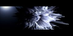 Trapcode Tao Motion Graphics Experiment Day 5.