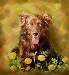 16x20in pet portrait