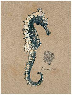 Vintage Linen Seahorse Art Print by Regina-Andrew Design