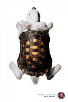 "Fiat: ""Geniune parts (Rabbit + Turtle)"" Print Ad by Giovanni+draftfcb"