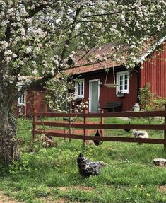 Step Inside An Idyllic Swedish Country Home on A Hill (my scandinavian home) Enter an idyllic Swedish country house on … Cabana, Swedish Cottage, White Cottage, Sweden House, Red Houses, Cottage In The Woods, Farm Cottage, Cottage Style, Farmhouse Style