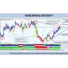 Forex pro's secret system indicators
