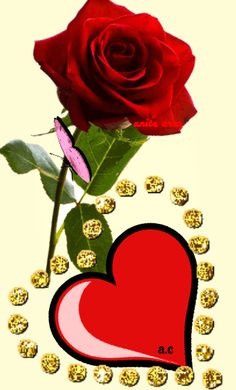 Beautiful Flowers Images, Beautiful Love Pictures, Flower Images, Beautiful Roses, Good Day Images, I Love You Images, I Love You Animation, Roses Gif, Love Heart Gif